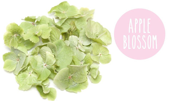 apple blossom confetti