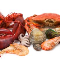 Product image for Fresh Shellfish